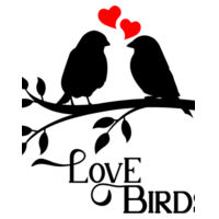 Love Birds  - Softstyle™ adult ringspun t-shirt Design