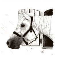 Lookout Horse Design