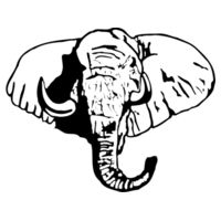 Elephant - Softstyle™ youth ringspun t-shirt Design