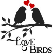 Love Birds Thumbnail